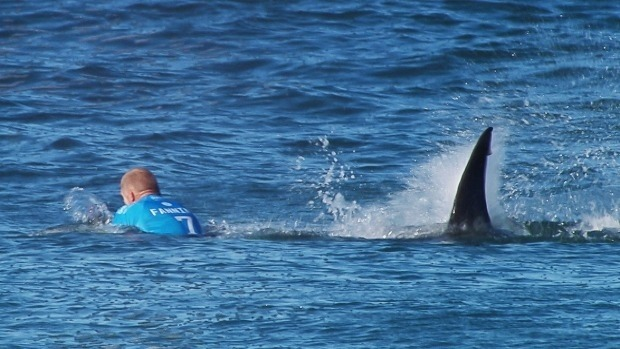Mick Fanning shark attack one of the most surreal near-death experiences seen …