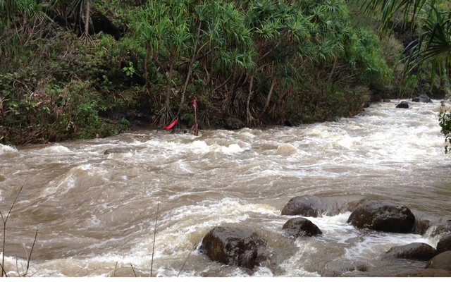 Tourists report near-death experience on flooded stream