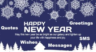 Happy New year 2017 Messages, SMS, Wishes, Quotes for Loved Ones