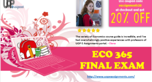 eco 365 final exam Eco 365 final exam answers 1) if average movie ticket prices rise by about 5  percent and attendance falls by about 2 percent, other things being equal, the.