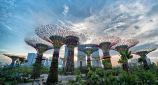 Must Visit The Gardens By The Bay Of Singapore